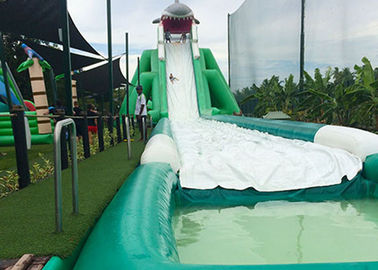 Hippo Giant Inflatable Water Slide For Adult , Comercial Slide Water Slip And Slide With Pool